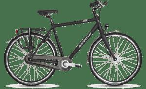 Treviso Premium N8 Gent